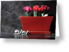 Colorful Cactus In Terracotta Pot Greeting Card