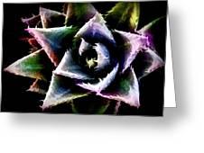 Colorful Cactus Greeting Card