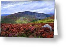 Colorful Carpet Of Wicklow Hills Greeting Card