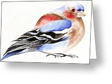 Colorful Chaffinch Greeting Card