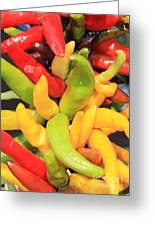 Colorful Chili Peppers  Greeting Card