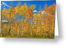 Colorful Colorado Autumn Landscape Greeting Card