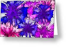 Colorful Cornflowers Greeting Card