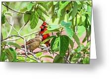Colorful Couple Greeting Card