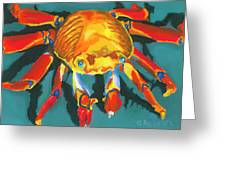 Colorful Crab II Greeting Card by Stephen Anderson