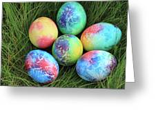 Colorful Easter Eggs On Green Grass Greeting Card