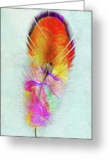 Colorful Feather Art Greeting Card