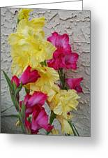 Colorful Glads Greeting Card