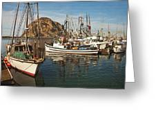 Colorful Harbor Greeting Card