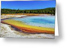 Colorful Hot Spring In Yellowstone Greeting Card