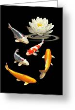 Colorful Koi With Water Lily Greeting Card