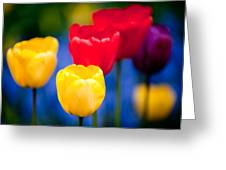 Colorful L569 Greeting Card