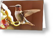 Colorful Landing Greeting Card