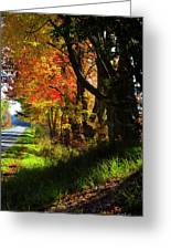 Colorful Maples Greeting Card