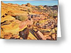 Colorful Morning At Valley Of Fire Greeting Card