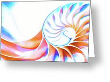 Colorful Nautilus Greeting Card