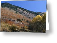 Colorful Orient Canyon - Rio Grande National Forest Greeting Card