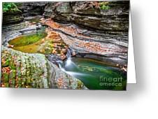 Colorful Pool In The Gorge Of Watkins Glen Greeting Card