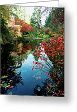 Colorful Reflection In Autumn Gardens. Greeting Card