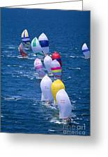 Colorful Sails In Ocean Greeting Card by Sharon Green - Printscapes