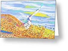 Colorful Seagull Greeting Card