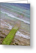 Colorful Seawall Greeting Card