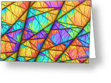 Colorful Slices Greeting Card