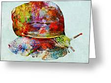 Colorful Snail Art  Greeting Card