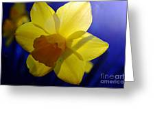 Colorful Spring Floral Greeting Card
