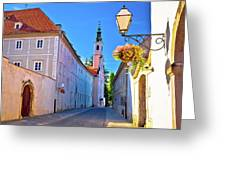 Colorful Street Of Baroque Town Varazdin  Greeting Card