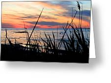 Colorful Sunset On Lake Huron Greeting Card by Danielle Allard