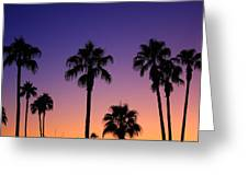 Colorful Tropical Palm Tree Sunset Greeting Card
