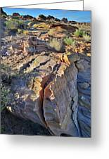 Colorful Wave Of Sandstone In Valley Of Fire State Park Greeting Card