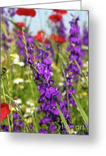Colorful Wild Flowers Spring Scene Greeting Card