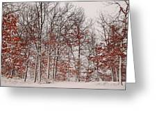Colorful Winters Day Greeting Card