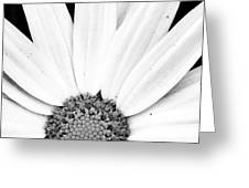 Colorless Greeting Card