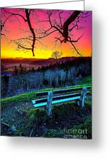 Colors And Light  Greeting Card
