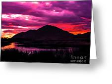 Colors At Dusk.... Greeting Card