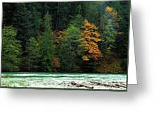 Colors In Nature Greeting Card