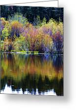 Colors Of Autumn In May Greeting Card
