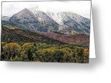 Colors Of Autumn On Mcclure Pass Greeting Card