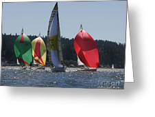 Colors Of Coupeville Greeting Card