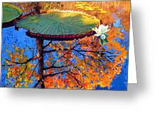 Colors Of Fall On The Lily Pond Greeting Card
