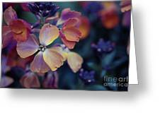 Colors Of Spring Greeting Card