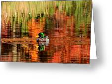 Colors Of The Morning Greeting Card