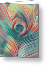 Colors Of The Rainbow Peacock Feather Greeting Card
