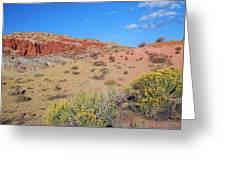 Colors Of The Utah Desert Greeting Card