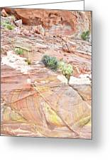Colors Of Wash 3 In Valley Of Fire Greeting Card