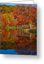 Colors Reflect Greeting Card