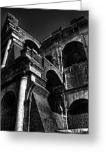 Coloseo 3 Greeting Card